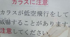 20110603_43