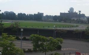 20110801_10