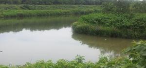 20110802_5