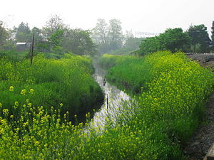 300pxageo_haraichimuma_river_1